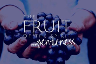 Fruit of the Spirit: Gentleness