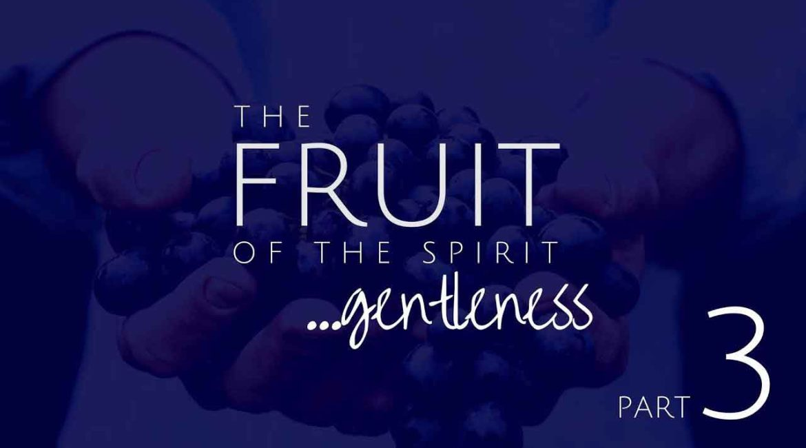 Gentleness: Remedy for Pride