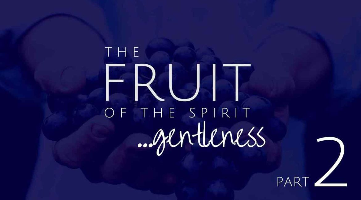 Gentleness Part 2