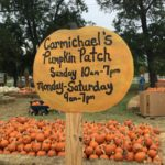 Carmichaels Pumkin Patch