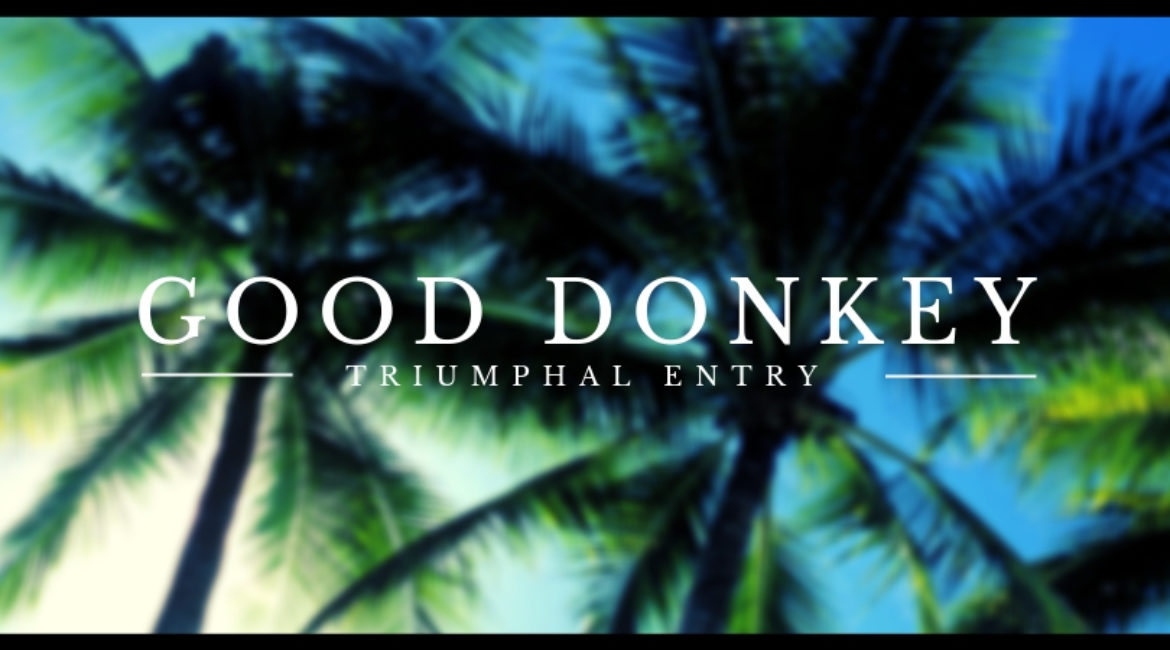 Good Donkey – The Triumphal Entry